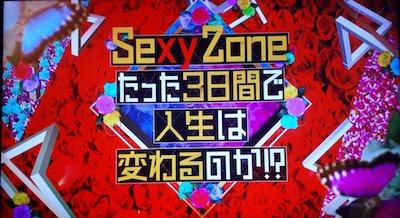 セクゾ テレビ出演